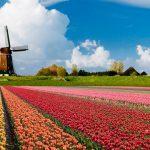 Holanda, con el menor plazo de pago